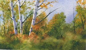 """Birches"" (Watercolor) [Sold]"